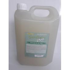 Desinfetante Eucalipto 5LT